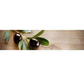 Пристеночная панель MSK Веточка оливы