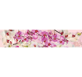 Пристеночная панель Орхидеи