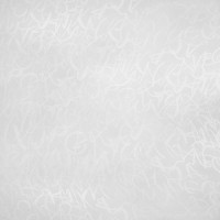 Стеновая панель Скиф 801 Латиница белая (матовая, длина 4.2 м)