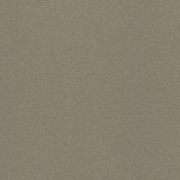 Стеновая панель Кедр G014/1 Галактика Шампань (5-я группа, длина 4.1 м)