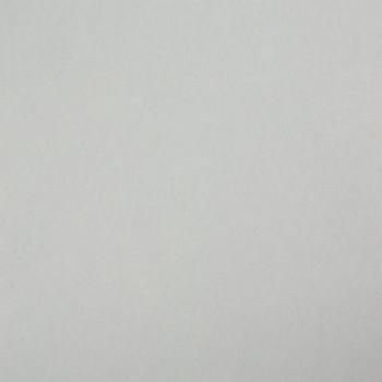 Столешница Троя Стандарт 1-я группа - цвет: 1110/S Белый